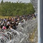 Ungheria migranti