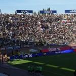 dove vedere Bologna Fiorentina streaming gratis