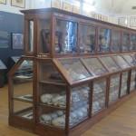 petizione museo cesare lombroso torino