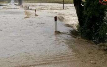 Alluvione Livorno news: ritrovato il corpo della donna dispersa, il bilancio sale a 7 vittime accertate