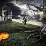 Halloween 2015 in Veneto: eventi e feste stregate, da Venezia a Verona
