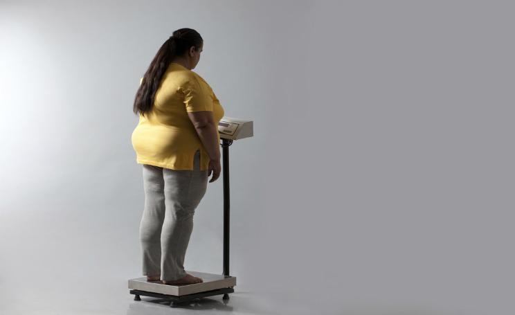 Amore insano obesità