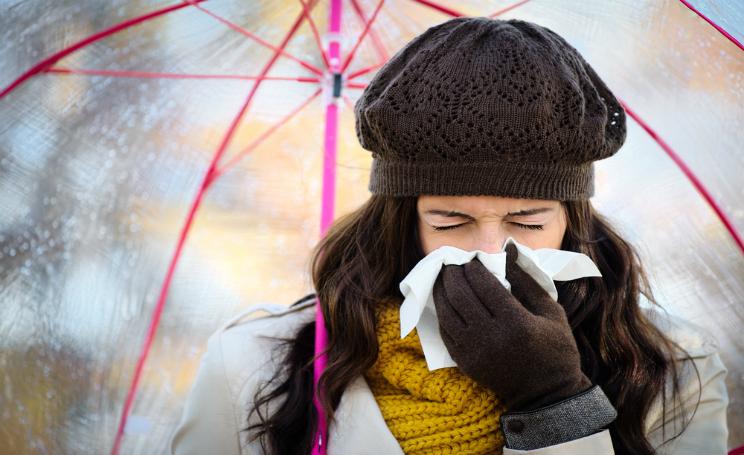 Influenza stagionale picco