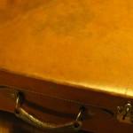 vicenza organi animale in valigetta