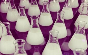 Startup Italia, nasce BiovelocITA: il primo acceleratore per aziende biotech lanciato da Sofinnova