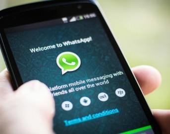 Whatsapp web e mobile, i gruppi salva vita: come prevenire i furti in casa