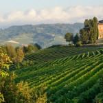 itinerari nel Monferrato intervista