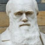 Darwin Awards cos'è