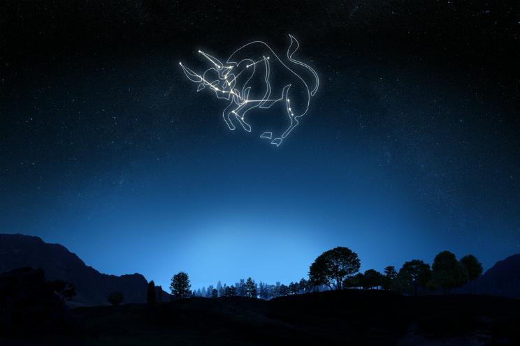 oroscopo 2016 toro