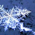 allerta neve a rma news previsioni meteo 19 gennaio