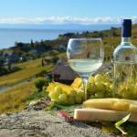 Itinerari del vino in Francia