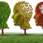 cervello umano stagioni cambiamenti