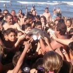 delfino morto argentina