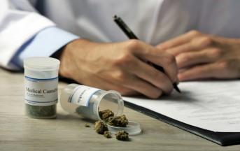 Facebook login news: rimosse pagine dedicate all'uso terapeutico della Cannabis