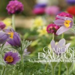 Giardini d'autore rimini 2016