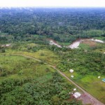 Parrot Bebop drone amazzonia