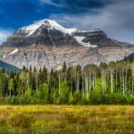 Revenant Monte Robson