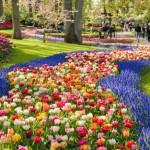 7 paesaggi meravigliosi da ammirare in primavera