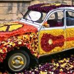 Festa Tulipano Castiglione del Lago in Umbria