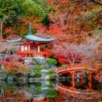 Giardini giapponesi in Italia