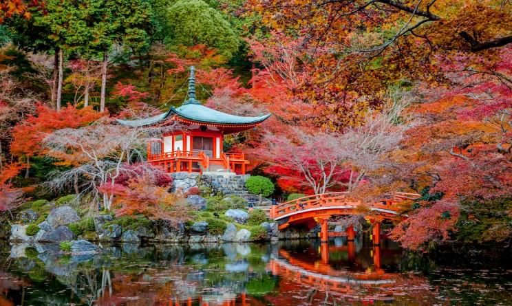 Giardini giapponesi in italia ecco i pi belli da roma a for Giardini giapponesi roma