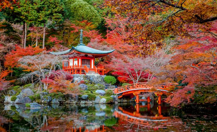 Giardini giapponesi in italia ecco i pi belli da roma a for Giardini giapponesi milano