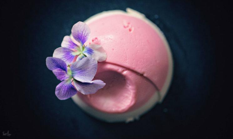 panna cotta dolce rosa urbanpost