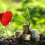 startup italiane ecosostenibili premio