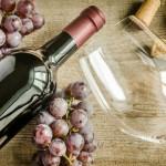 Festival del vino a Cesena 2016