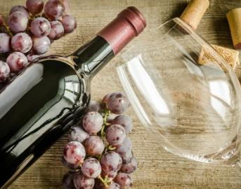 Romagna Wine Festival 2016: l'evento che fa di Cesena la capitale del vino