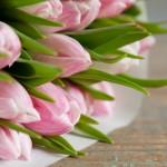 significato simbologia fiori