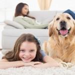 animali in casa in affitto, casa animali, animali domestici, animali in casa, casa in affitto animali, animali in casa sì o no, animali in casa leggi,