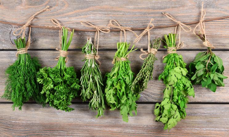 Basilico prezzemolo timo origano benefici delle erbe - Erbe aromatiche in casa ...