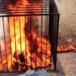 isis ragazze bruciate vive