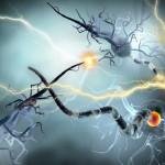 sclerosi multipla cause
