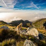 Vacanze low cost luglio 2016 in montagna