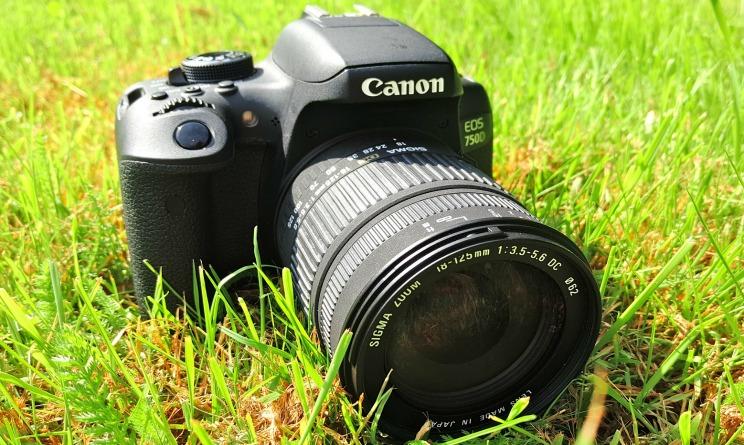 Le 5 migliori Reflex per principianti: offerte Canon, Sony e Nikon ...