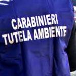 6 arresti in lombardia fanghi tossici