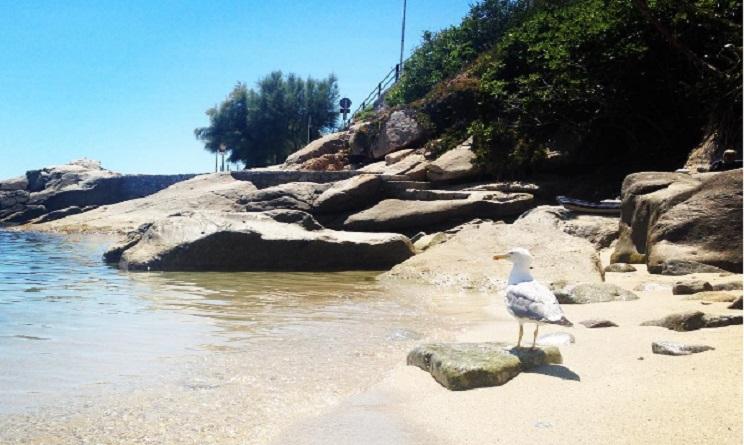 Spiaggia di Seccheto/ Image credit: Sonila Alushi - Instagram