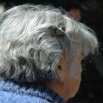 Alzheimer antidolorifico cura