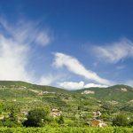 Idee gita a Ferragosto Veneto, da Verona a Venezia