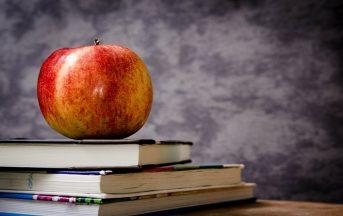 MIBACT: concorsi 2017 per laureati in Giurisprudenza e non solo con Ales
