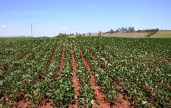 Voucher lavoro Inps 2016: novità su tracciabilità e settore agricolo, ecco cosa cambia