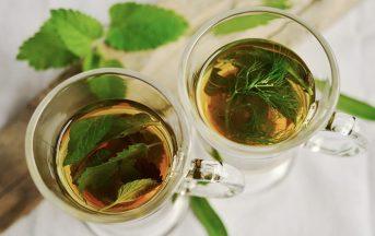 Tisana alla menta fresca: ricetta, proprietà e benefici