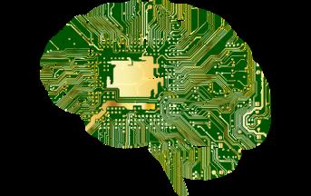 Il cervello e i comportamenti disonesti: così la nostra mente si abitua a commettere azioni scorrette