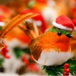 Mercatini Natale Bolzano, Trento, Merano e Bressanone: date e orari 2016