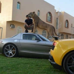 giovani ricchi arabi