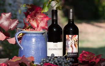 Intolleranza al vino? La causa dei sintomi alle ammine biogene