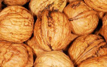 Dieta Paleo: ecco di cosa si tratta e quali sono gli ingredienti delle ricette più gustose