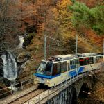 Ferrovia Vigezzina Centovalli informazioni utili
